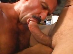 big pecker daddy poke