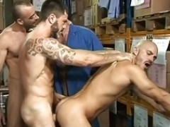 Hairy Bear Hunks at Work