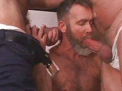 lovely gay Bears driling