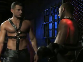 2 twinks Muscle Leather