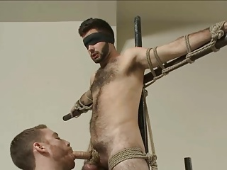 sadomasochism - lovely bushy dude gets fastened Up And Edged.