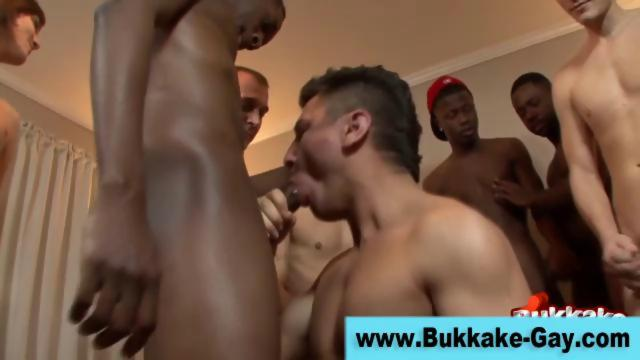gay bunch dick sucking At Its most admirable