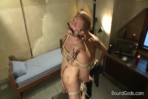 homosexual Tattooed lad tied Up And acquires cock Sucked