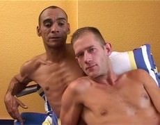 Series Of clips Of allies Having Sex.