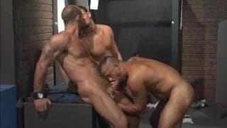 Three homosexual Pornstars All plowing jointly