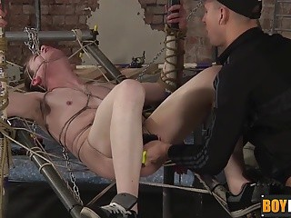 fastened Up bondman Leo gets His ass banged By lovely Deacon