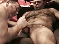 Furpigs - Halftime blow job