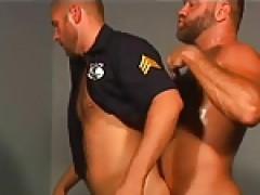 Bear police
