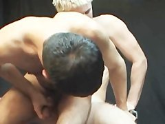 3 wild nakedback bangers In action!