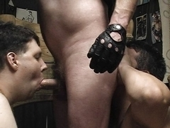 Bound gays sucking dick