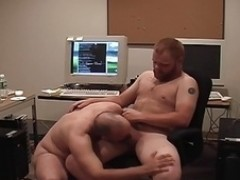 Bears fucking in the Office