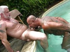 old men In Tats pounding By The Pool