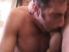 naughty gay dudes sucking & hammering