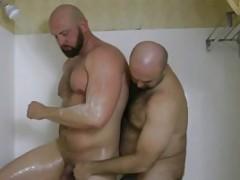 2 big Bears