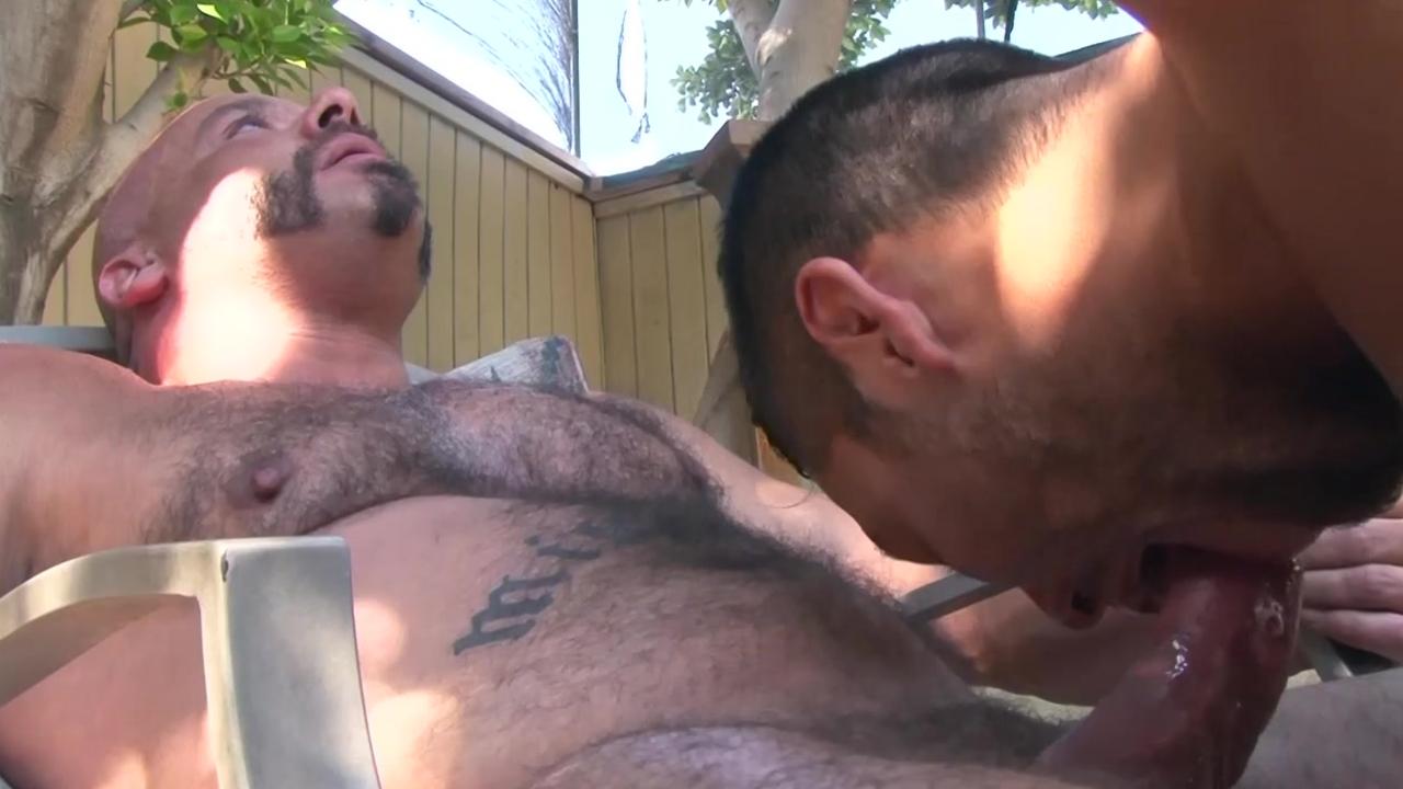 Bears slamming twinks In The Back Yard - Factory video
