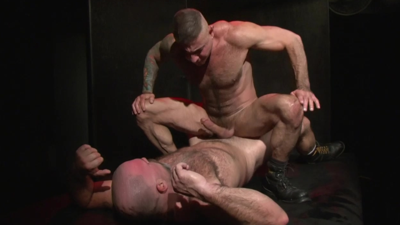 Bear Takes Me doggy style - Factory video