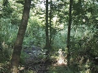 Wichsen Im Diemerwald