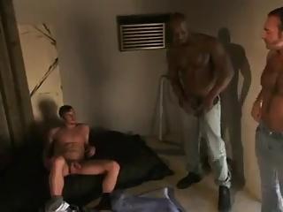 3 fine guys    -   Nial