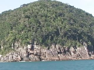 Island Love  1