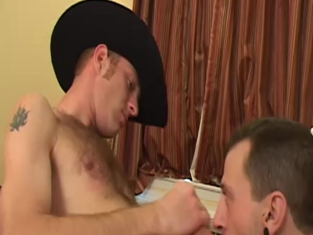 this chaby Tthis chabre Cowboy- Factory video
