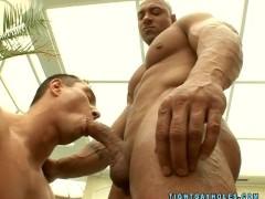 Bodybuilder Bull