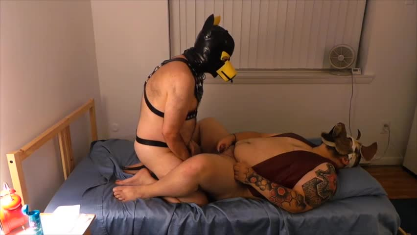 Pup Dante bangs Me Into The Pup That I am. his cock Is consummate In every Way. I Feel Into A blowjob Space That Looking Back On The video I didn't Ev