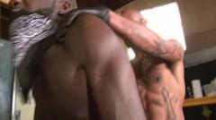 Damon Doggs plow Stoopid - Scene 5 - Damon Doggs cum Factory