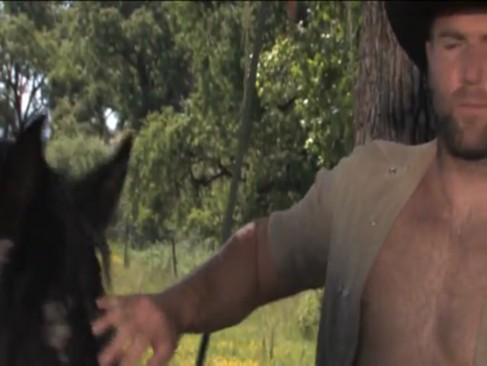 Cowboys (2012) 1