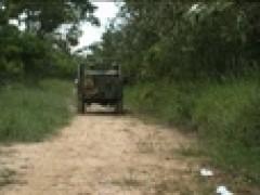 Jeep Sex