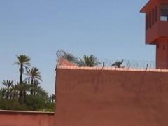 Arabian Prison 5
