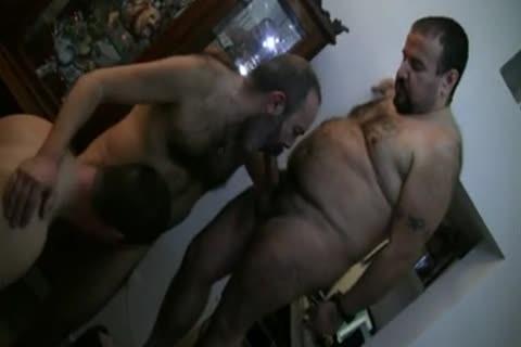 Homemade Bear Orgysuper Hott
