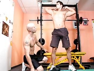 beautiful homosexual Gym bang