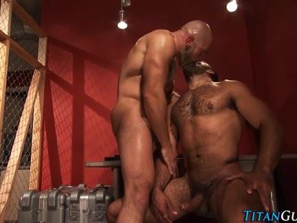 daddy slammed Bear ejaculates
