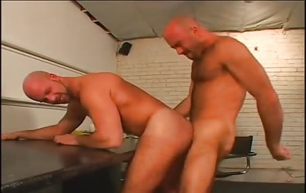 Bald boyz Are Having The Time Of Their Lives