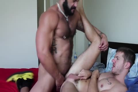 Muscle Bull Gives Male Serious wazoo fucking