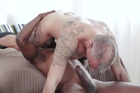 Muscle Bull Gives Male Serious ass plowing
