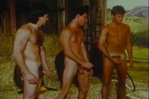 Vintage Barn orgy Bb