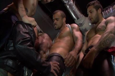 Hog fine (full clip)