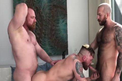 Ginger Bear's raw Threeway