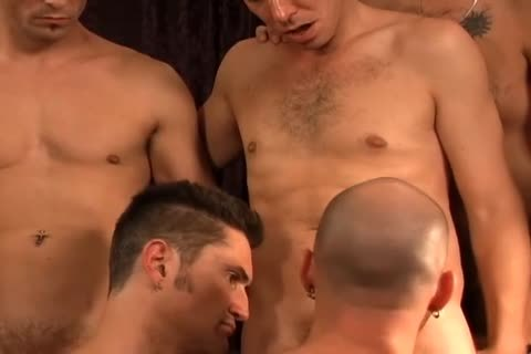 A group Of gay friends All pounding jointly