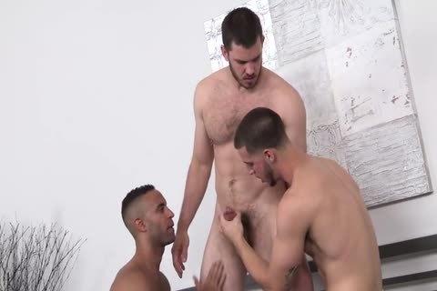 Lorenzo, Vander & Zale