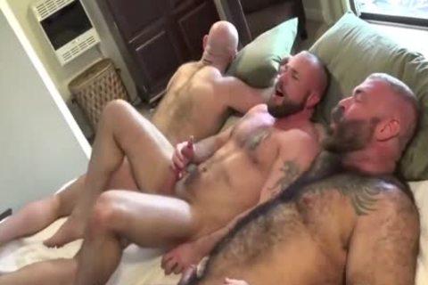 HubxDaddy Three meaty Bears pounding ass