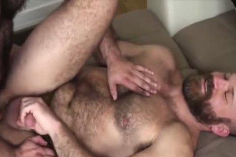 strong Body Chest Hair Bear Daddy bonks Sex