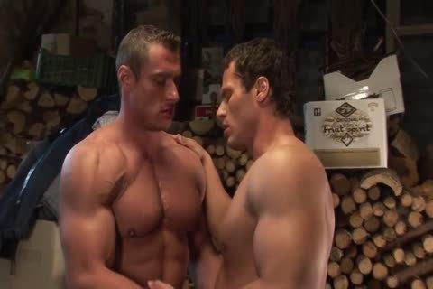 muscular Gods