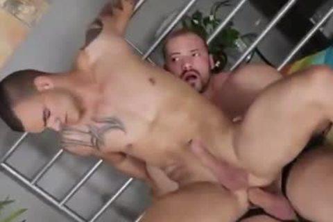 biggest Musclebear plows Hunk