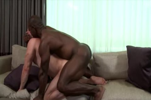 Thats truly Your cock With Hans Berlin & Aaron Trainer