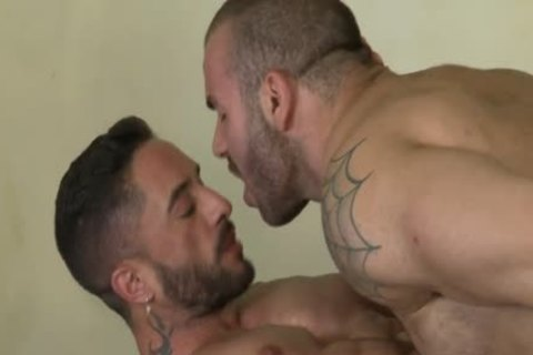 large males Sex