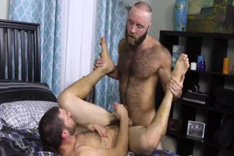 TEDDY BEAR & VANDER - CM
