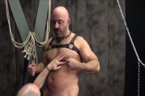 Bears Leathering