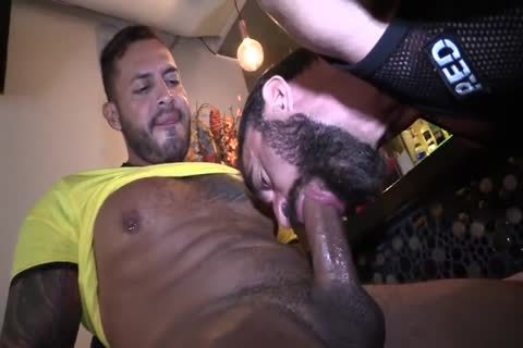 Bull fuck In Boysbar